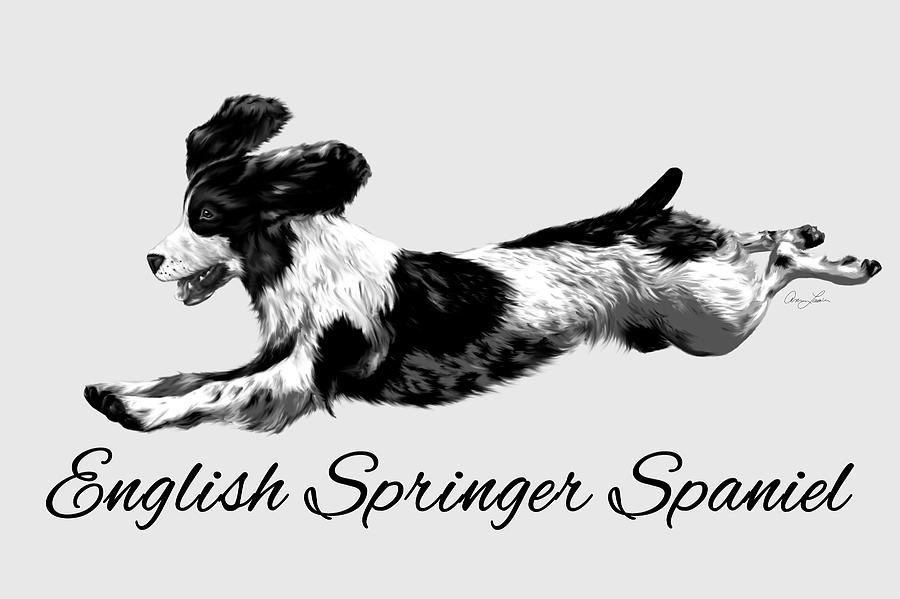 English Springer Spaniel by Ann Lauwers