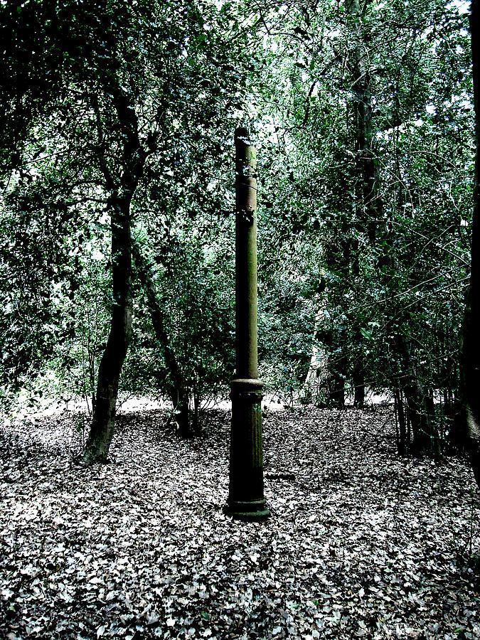 Enigma Photograph By Roberto Alamino