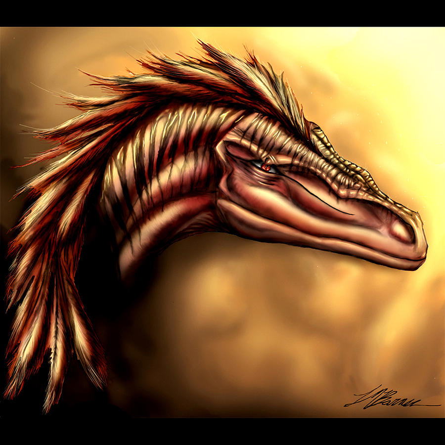 Raptor Painting - Enigma by Tiffani Barner