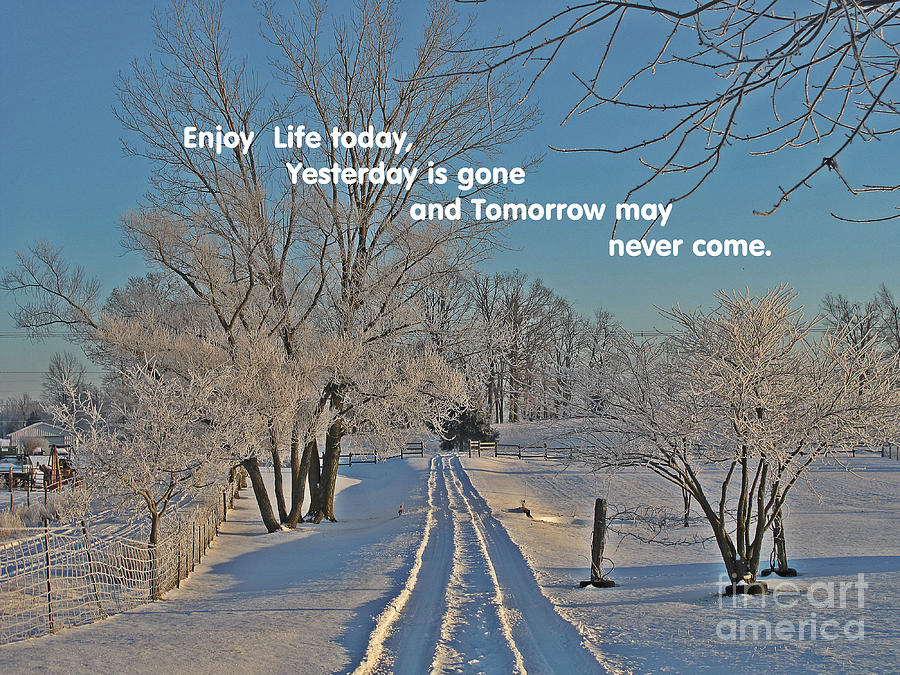 Enjoy Life Today Quote Winter Image