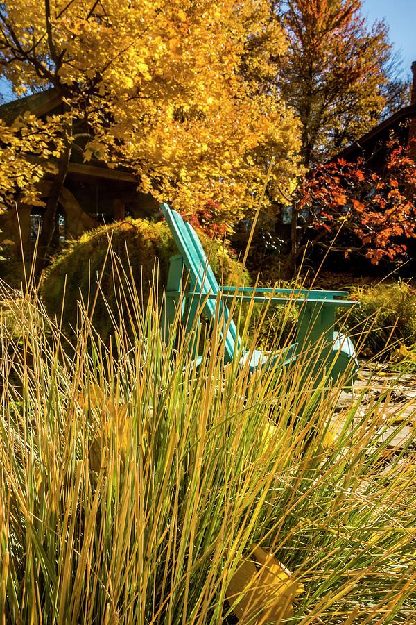 Enjoy the Warm Autumn Sunshine by Albert Seger