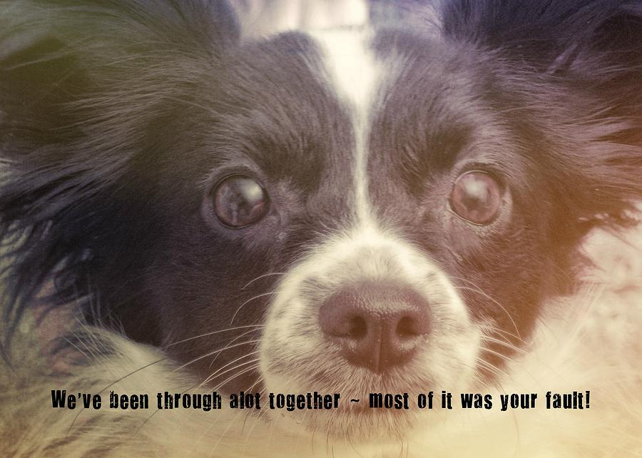 Dog Photograph - Ennis Quote by JAMART Photography