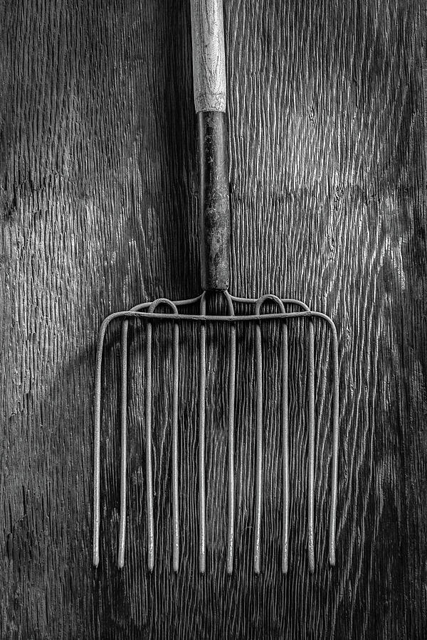 Background Photograph - Ensilage Fork Up On Plywood In Bw 66 by YoPedro
