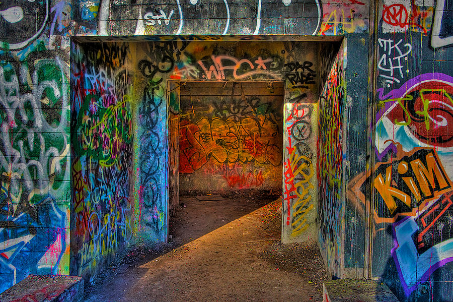Graffiti Photograph - Entrance To The Asylum by William Wetmore