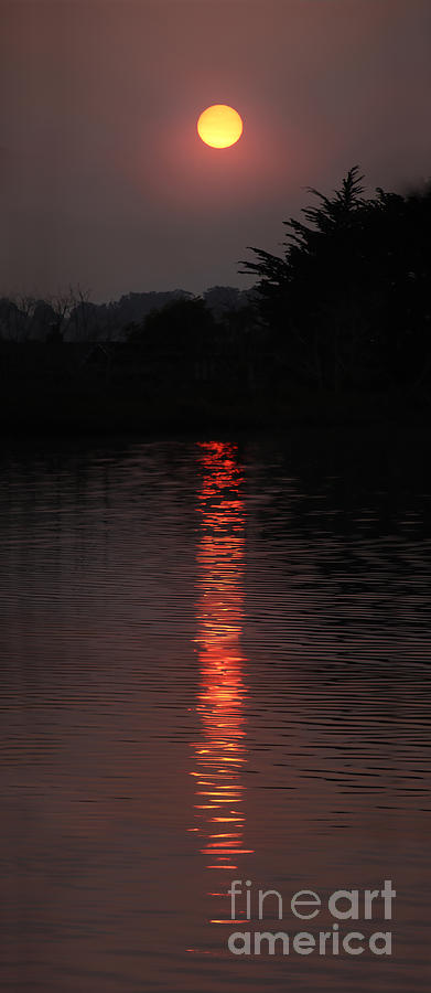Equanimity In The Sunset Waters Photograph