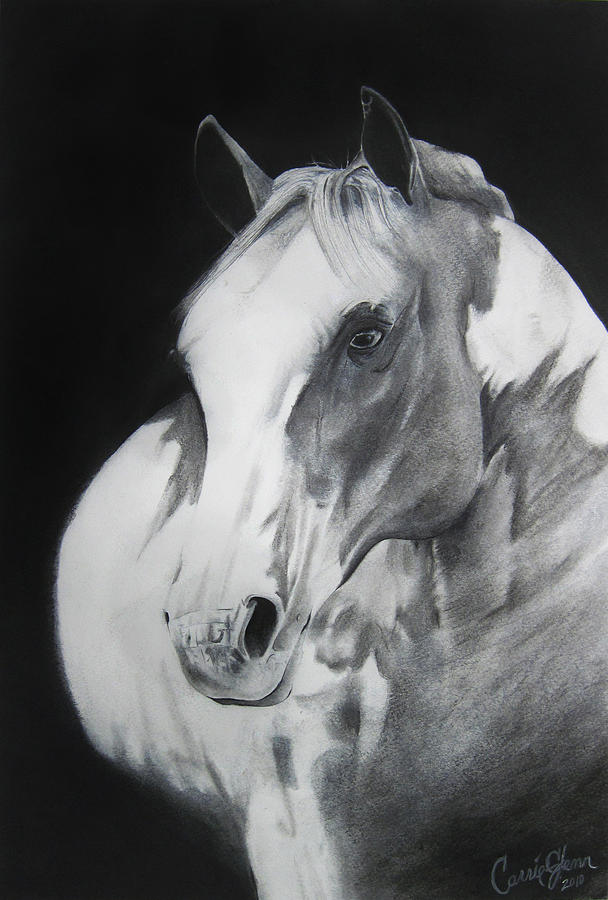Horse Drawing - Equestrian Beauty by Carrie Jackson