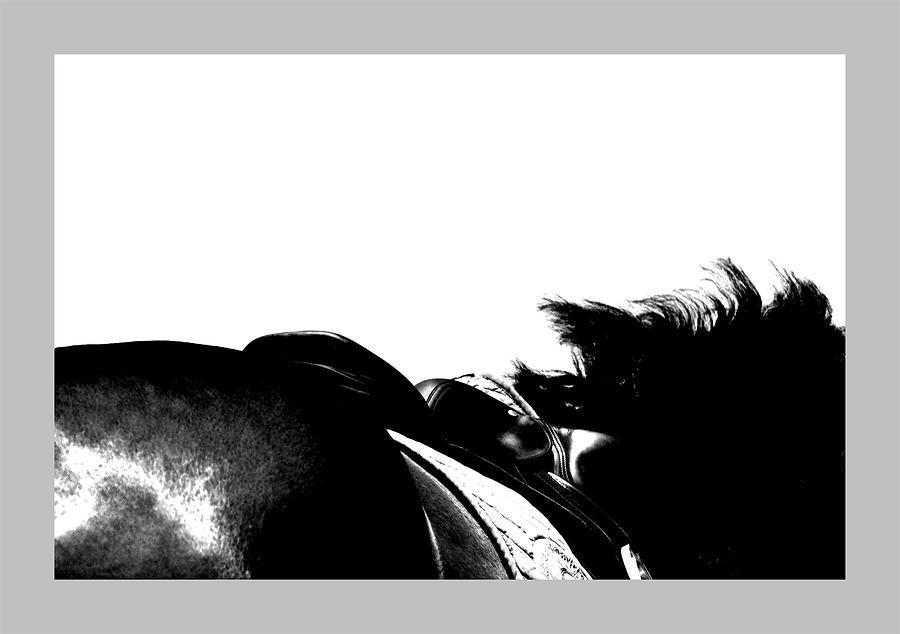 Horse Photograph - Equine Landscape by Rachel Dubber