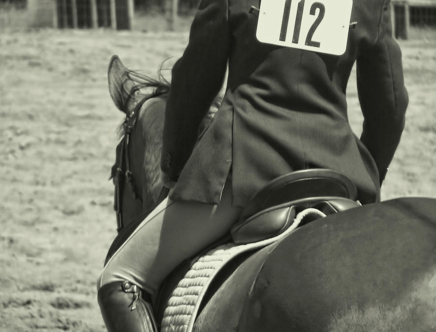 Horse Photograph - Equitation by JAMART Photography