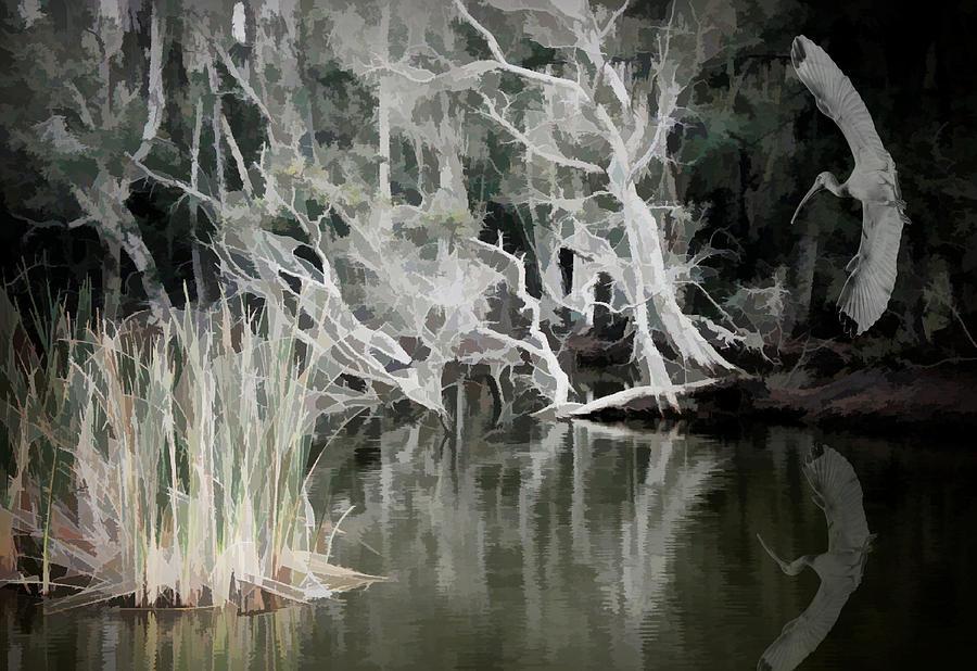 Trees Photograph - Erie Jungle by Rosalie Scanlon