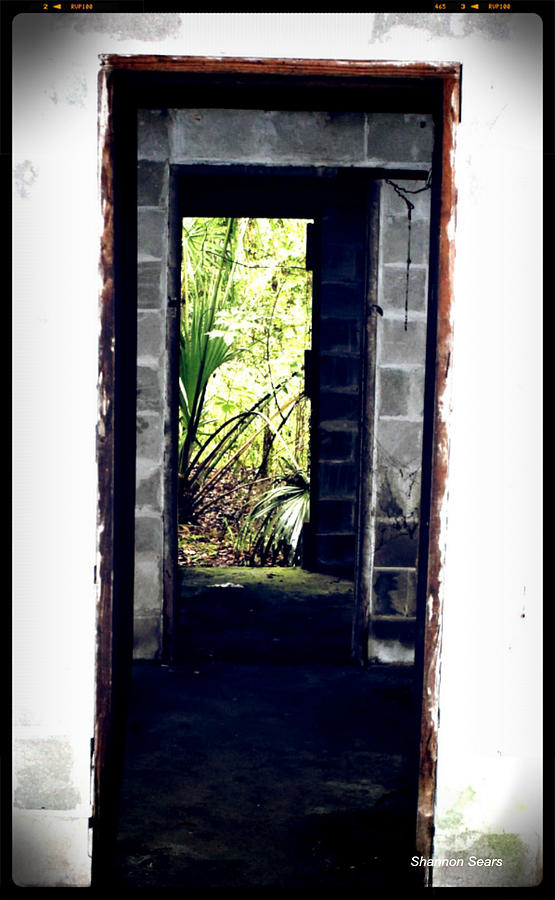 Shannon Photograph - Eroding Door Leading To The Forgotten  by Shannon Sears