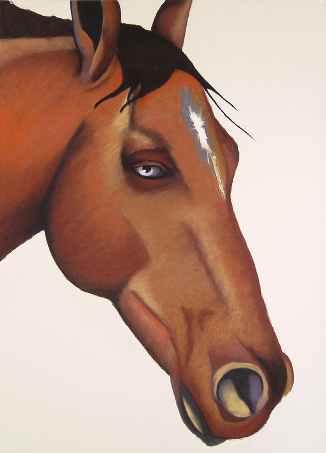 Horse Painting - Eros by Brenda Wolf