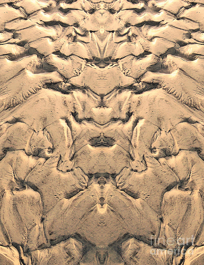 Sand Photograph - Golden Tidal Sands by Phil Perkins