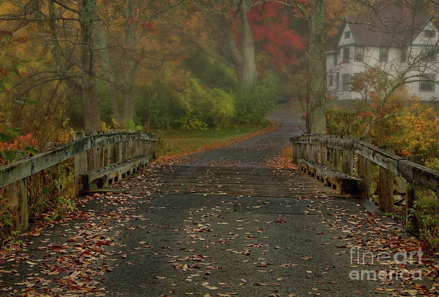Fall Photograph - Errie feelin to the morning by Diana Nault