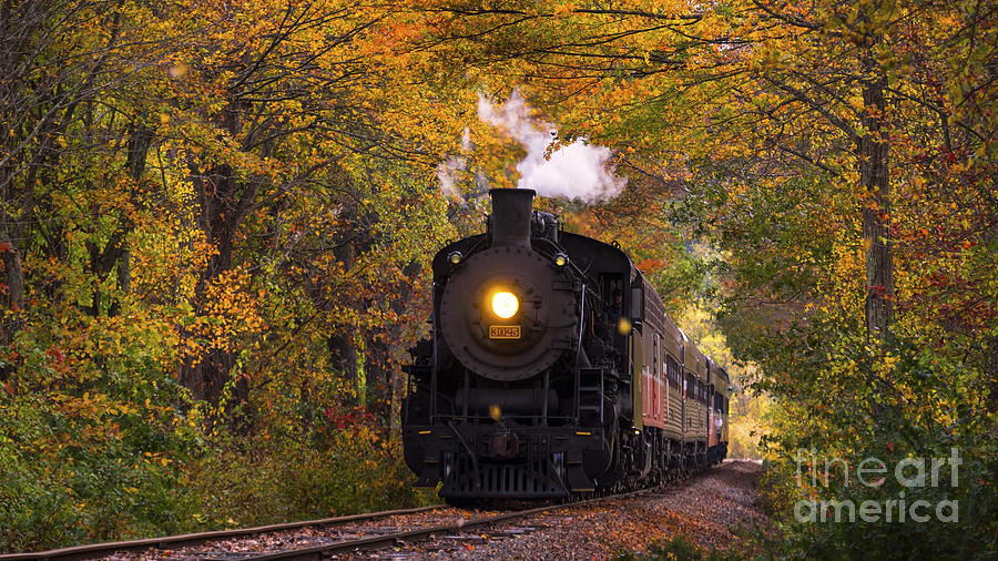 Essex Steam Train 3025 steaming through fall foliage. by New England Photography