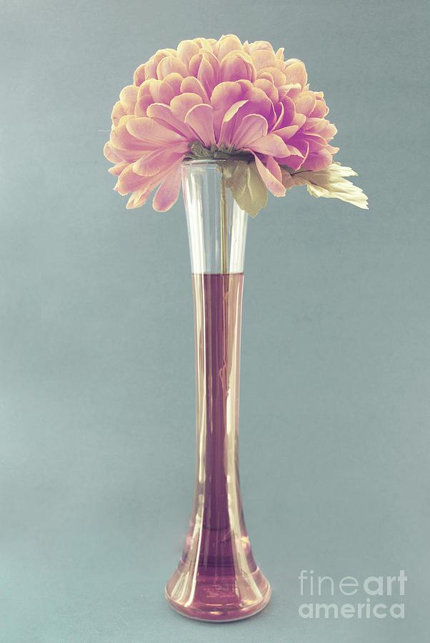 still Life Flower Photograph - Estillo Vintage B by Aimelle