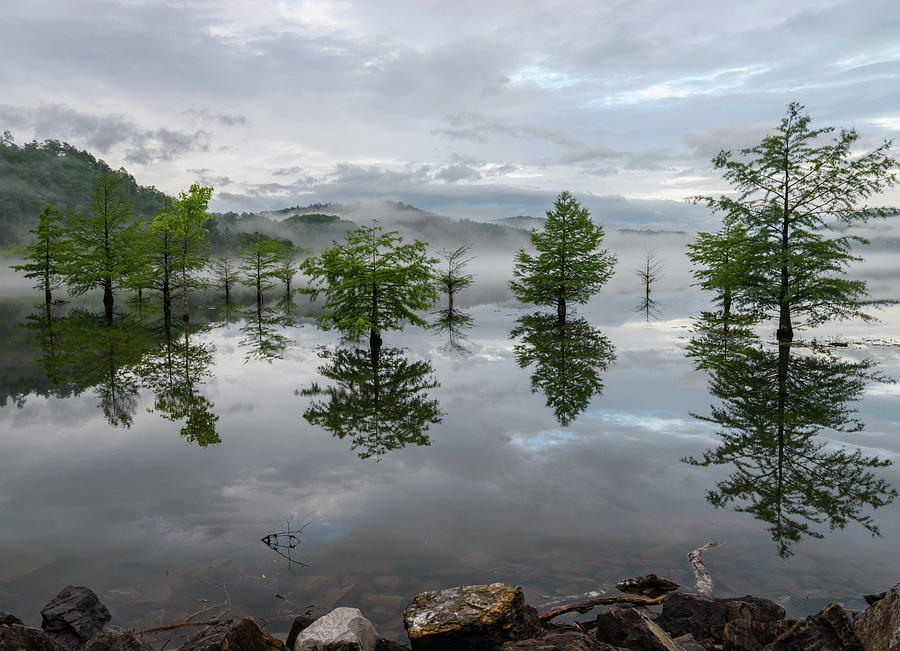 Lake Photograph - Ethereal Reflections by Christopher Webb
