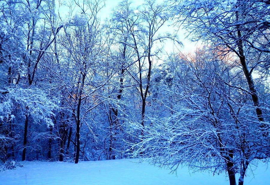 Ethereal Snow by Deborah Kunesh