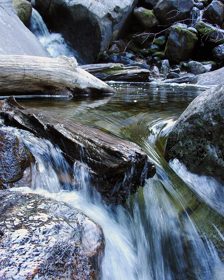 Nature Photograph - Etruded Log-end In Merced River II by D Kadah Tanaka
