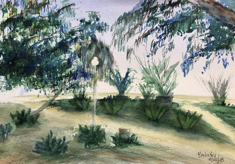 Eucalyptus  Painting by Belinda Balaski