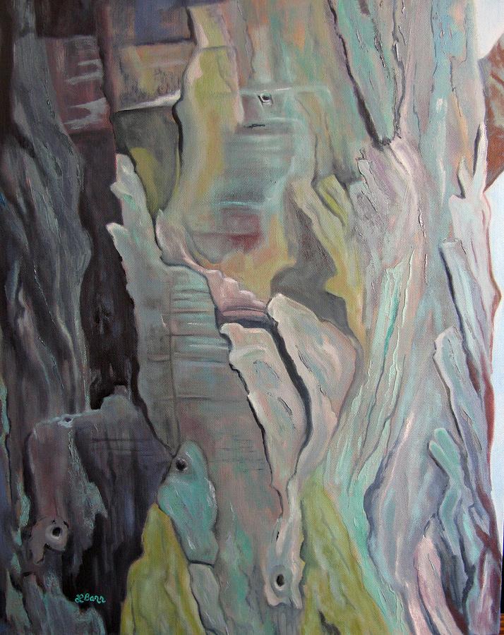 Eucalyptus-Laguna Beach by Lisa Barr