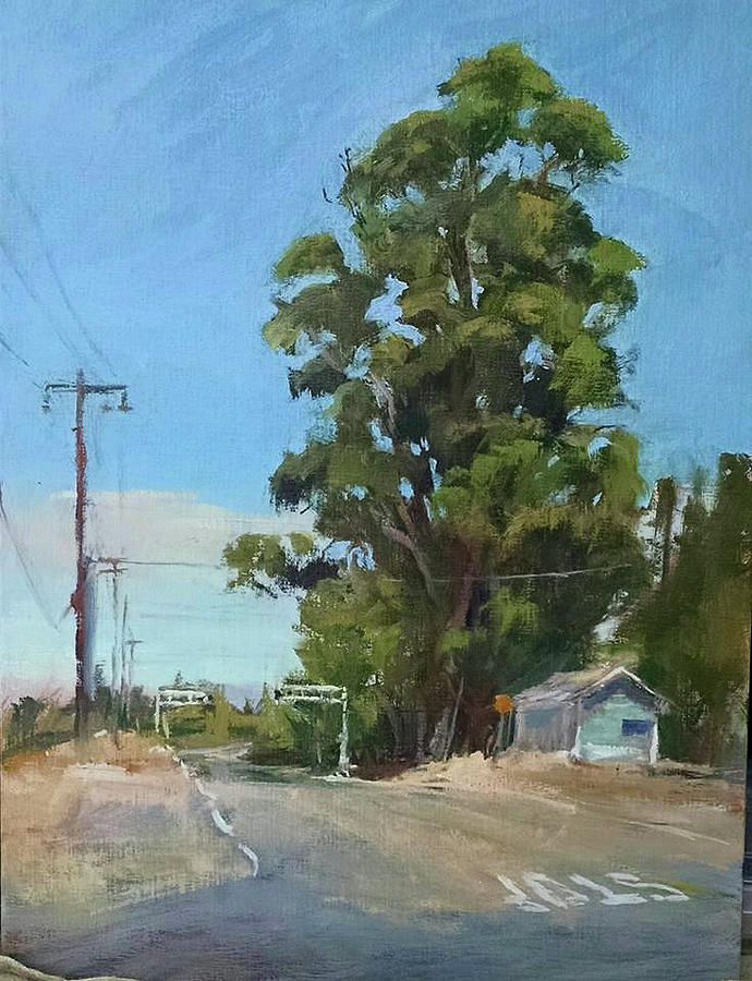 Landscape Painting Painting - Eucalyptus Tree Near Schellville, Ca by Peter Salwen