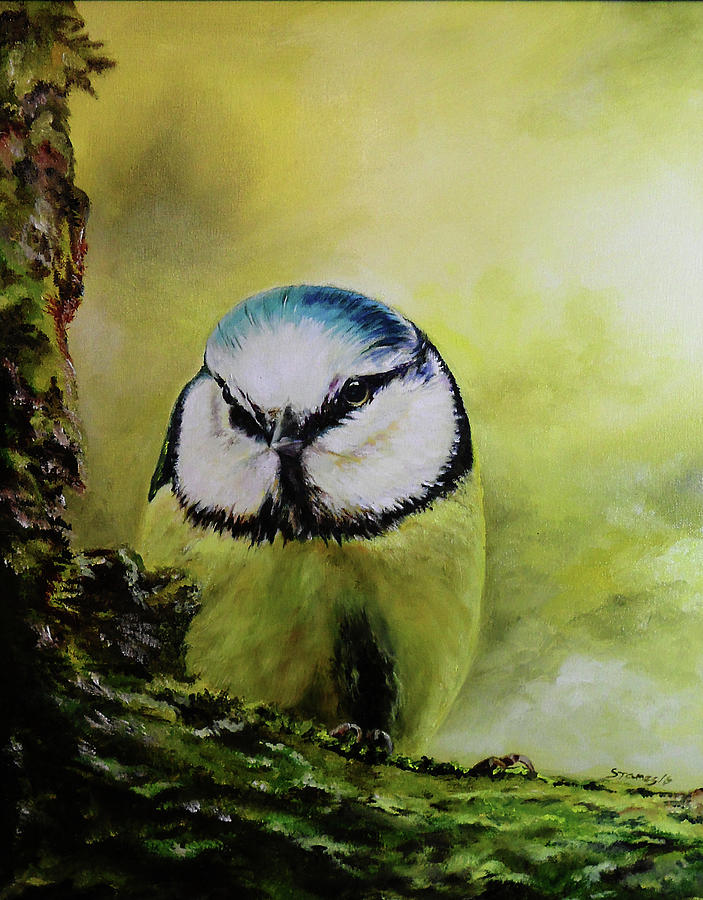 Oil Painting - European Blue Tit by Steve James
