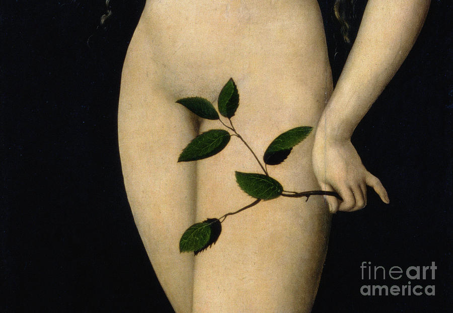 Adam Painting - Eve by The Elder Lucas Cranach