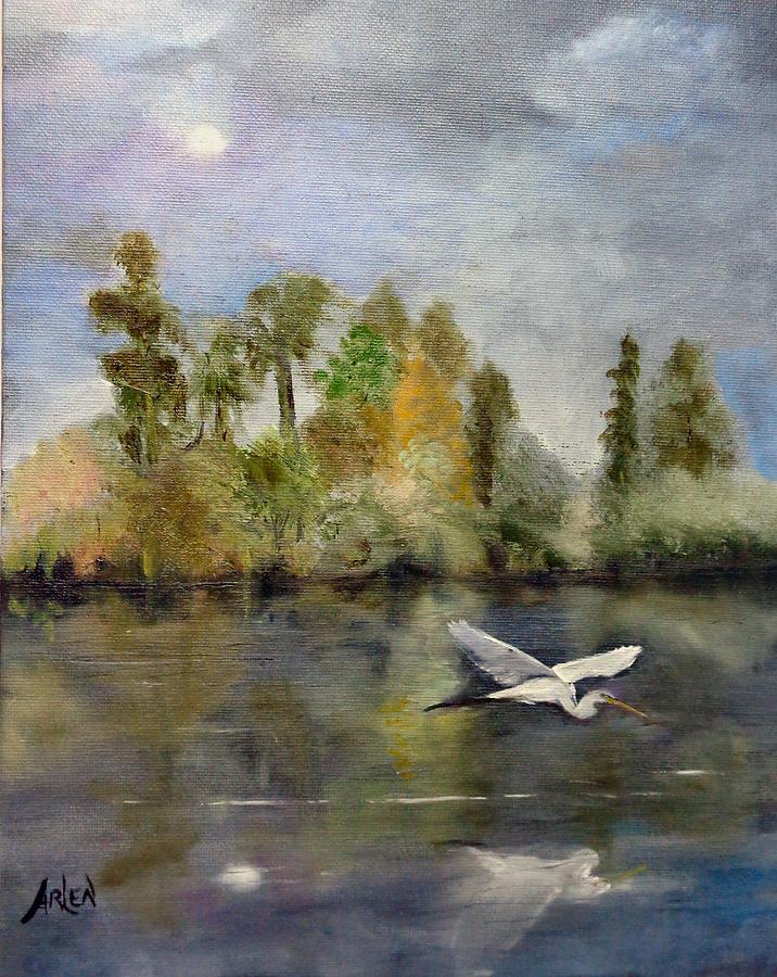 Evening Flight by Arlen Avernian - Thorensen