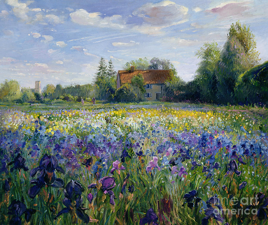 Landscape; Market Gardening; Flowers; Horticulture;cottage; Summer; Rural; Irises; Landscapes Painting - Evening At The Iris Field by Timothy Easton