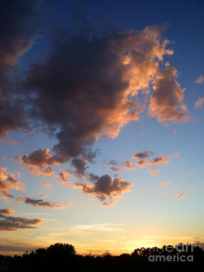 Arte Photograph - Evening Flames C by Ciro Pignalosa