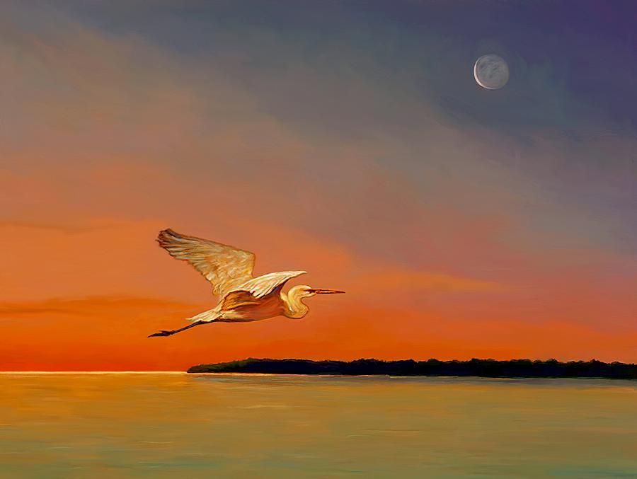 Evening Flight by David Van Hulst