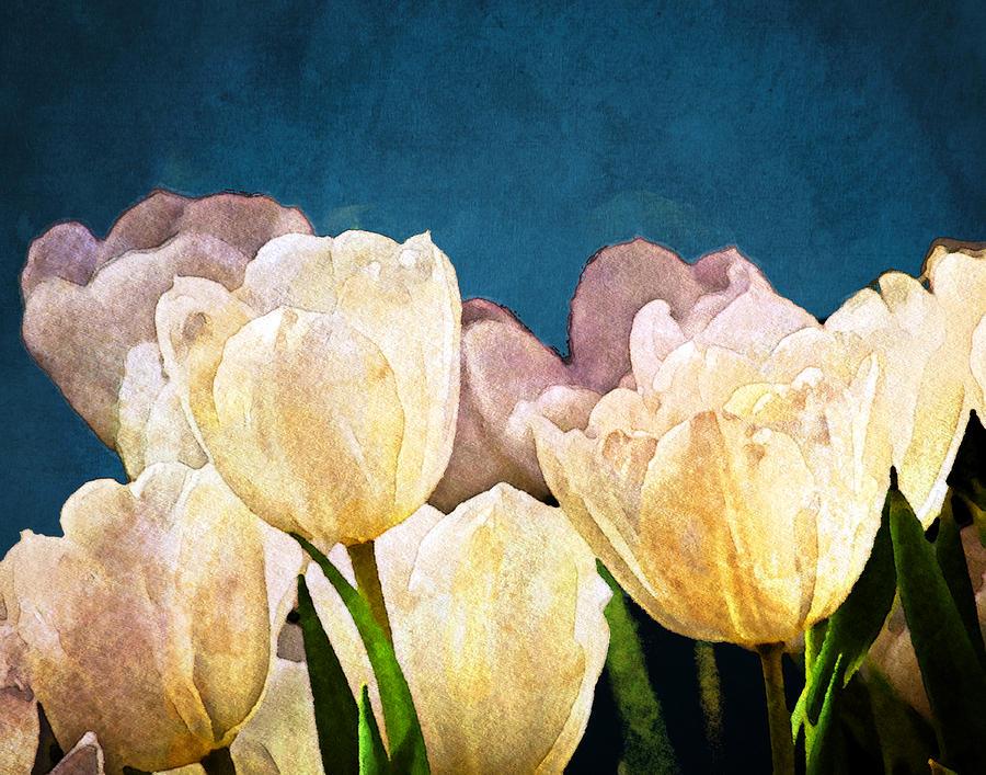 Floral Photograph - Evening Garden by Moon Stumpp