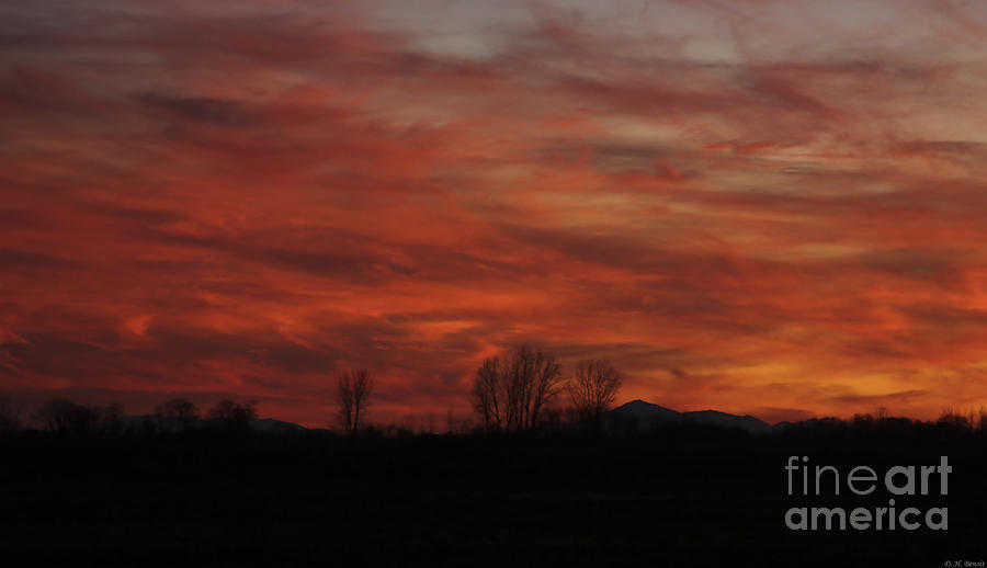 Sunset Photograph - Evening In Red by Deborah Benoit