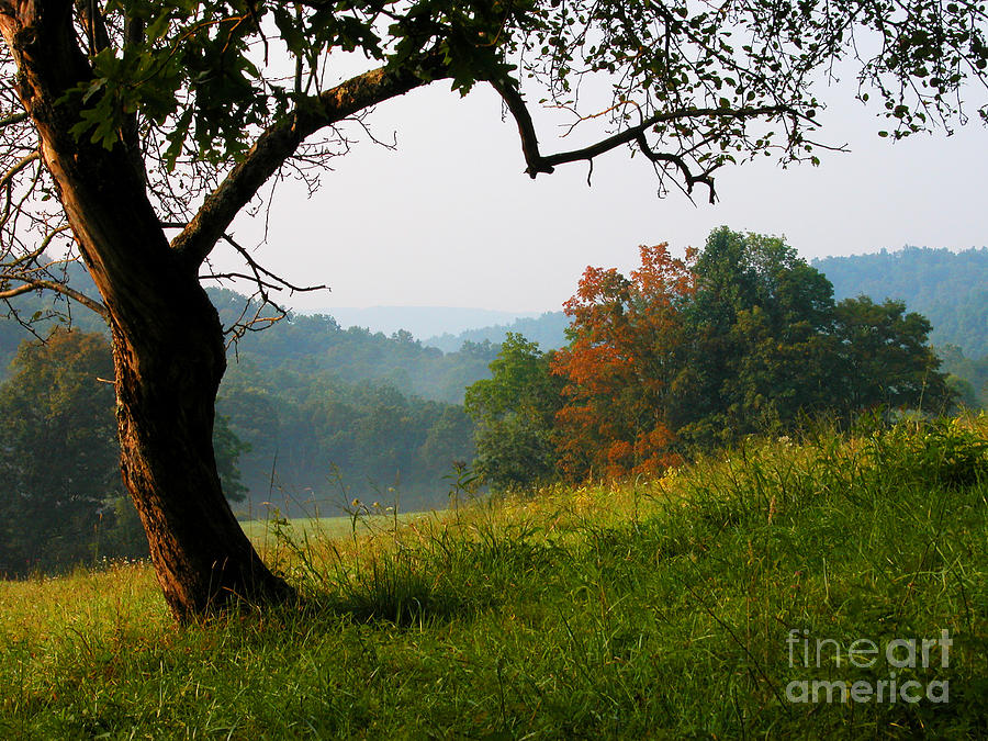 Family Farm Photograph - Evening In The Pasture by Thomas R Fletcher