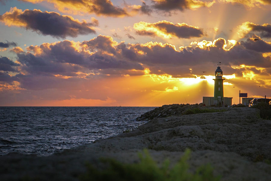 Evening Lighthouse Photograph by Paki OMeara