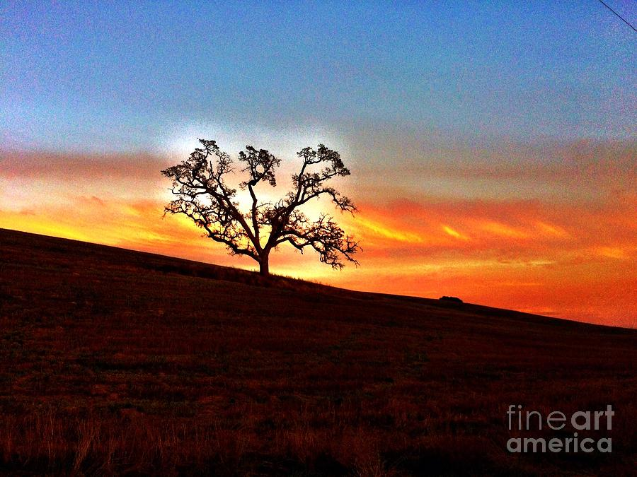 Sunset Photograph - Evening Peace  by S Forte Designs