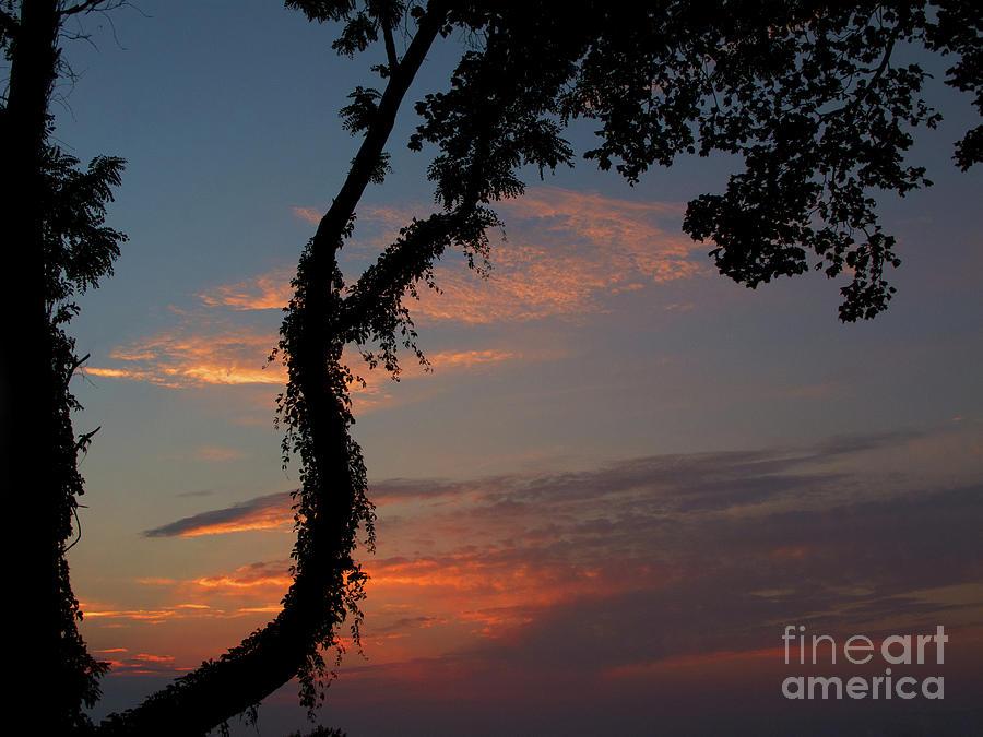 Sunset Photograph - Evening Sun by Ann Horn
