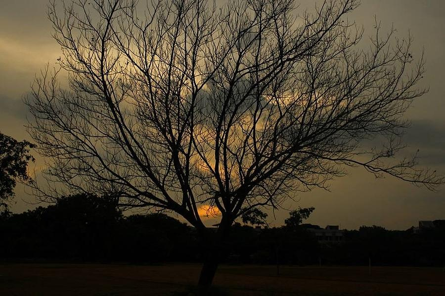 Evening Sunset Photograph - Evening Sunset by Rakesh Kumar Natarajan