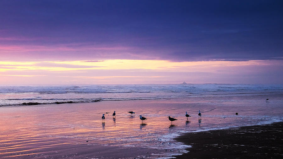 Oregon Photograph - Evening Tide Reflections by Dick Wood