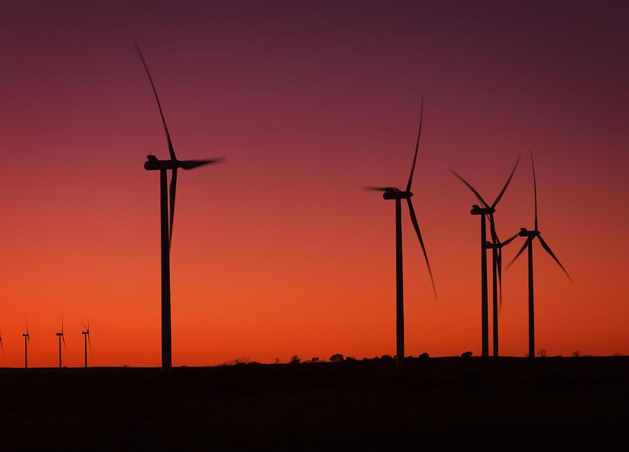 Evening Wind Photograph