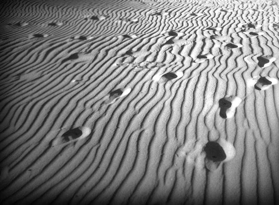 Sand Photograph - Eventually by Reed Orman