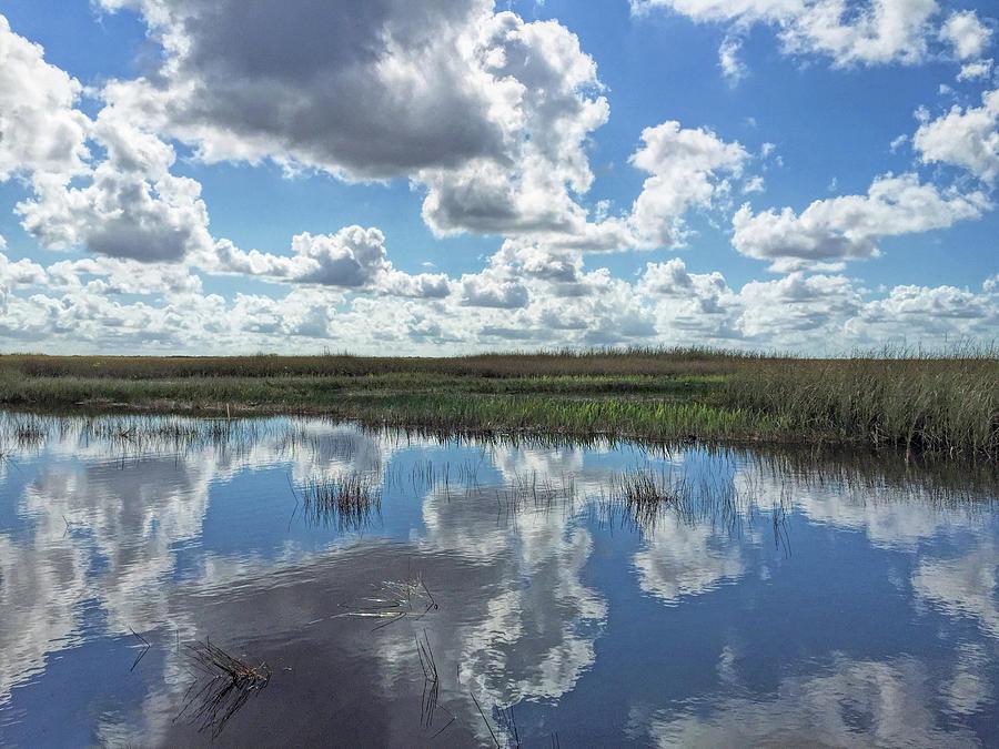 Everglades by A H Kuusela