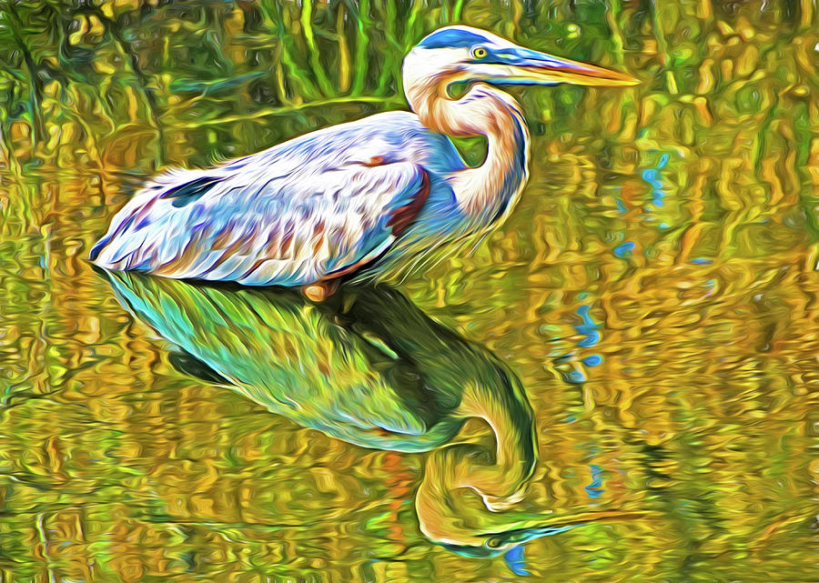 Florida Everglades Photograph - Everglades Blue Heron by Dennis Cox