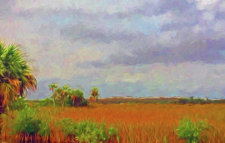 Everglades Sawgrass, Palms and Hammocks by Ginger Wakem
