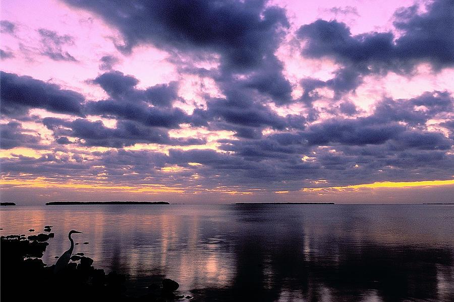 Sunrise Photograph - Everglades Sunrise by Alan Lenk