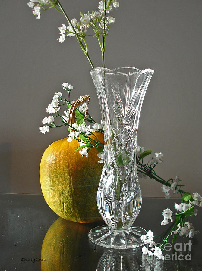 Still Life Photograph - Everlasting Harvest by Shelley Jones