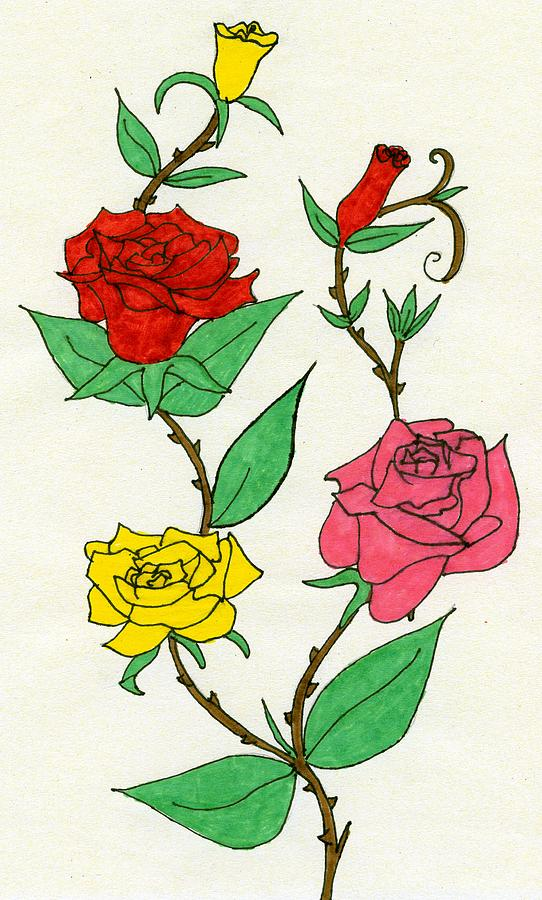 Colour Drawing - Every Rose Has Its Thorn by Andrew Davies