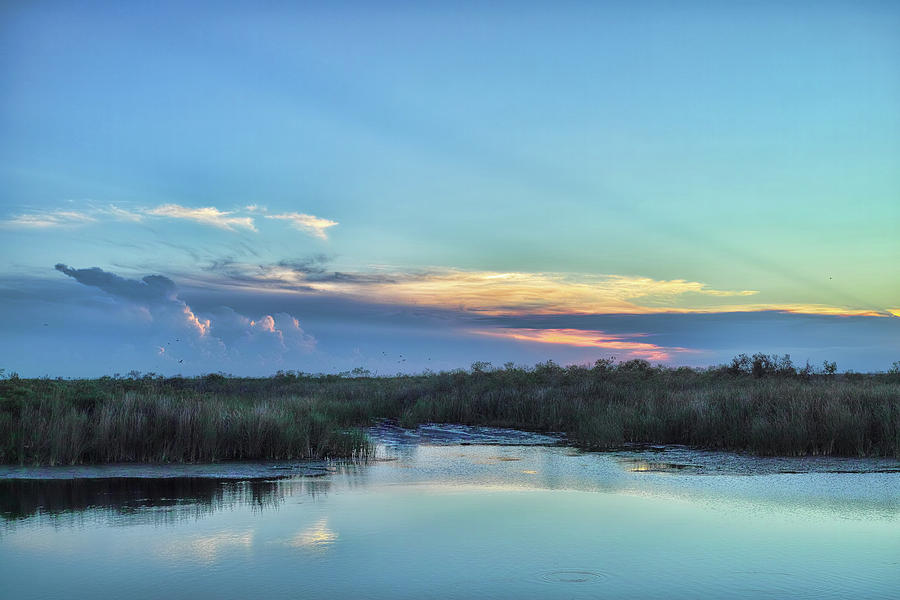 Everglades Photograph - Everyglades Sunset by Roberto Aloi
