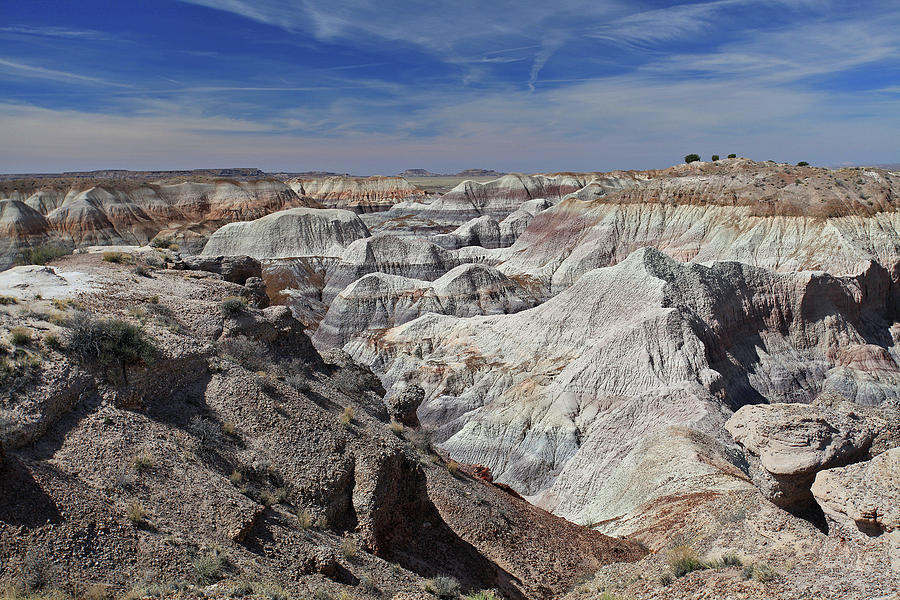 Evident Erosion by Gary Kaylor