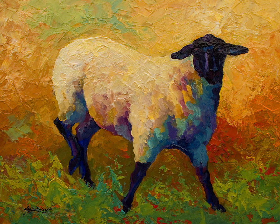 Llama Painting - Ewe Portrait Iv by Marion Rose